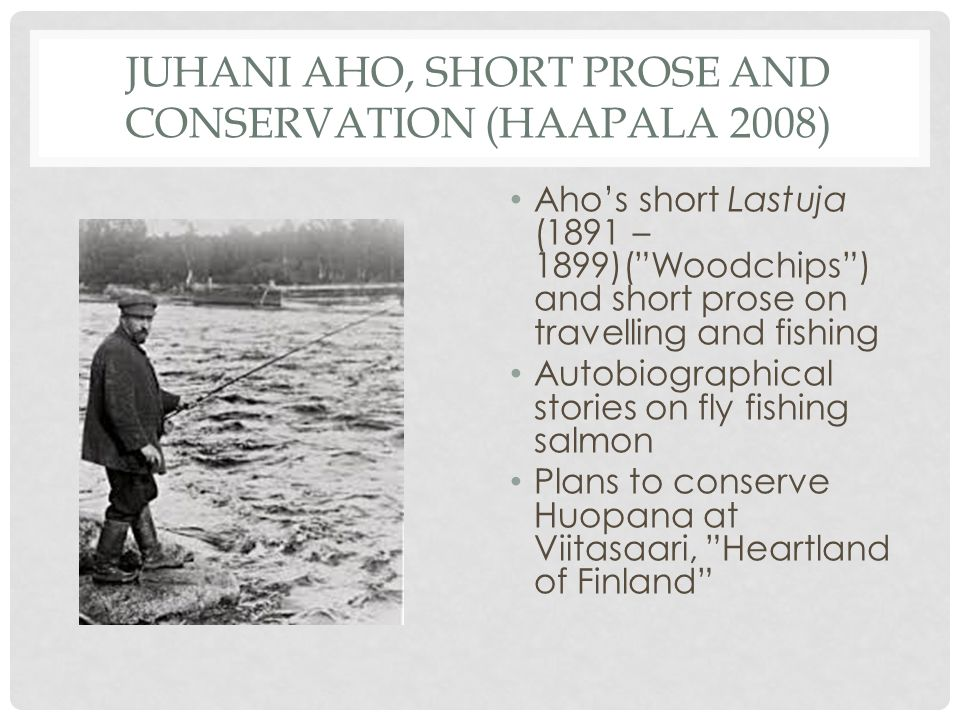 JUHANI AHO, SHORT PROSE AND CONSERVATION (HAAPALA 2008) Aho's short Lastuja (1891 – 1899)( Woodchips ) and short prose on travelling and fishing Autobiographical stories on fly fishing salmon Plans to conserve Huopana at Viitasaari, Heartland of Finland