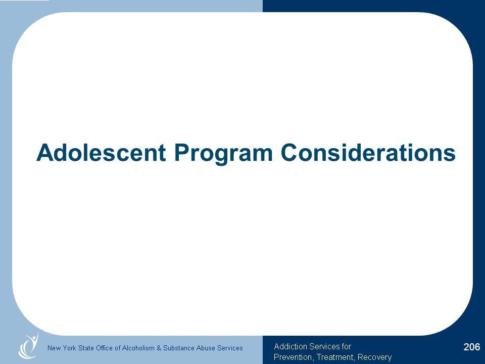 Adolescent Program Considerations 206