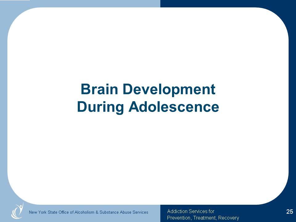 Brain Development During Adolescence 25