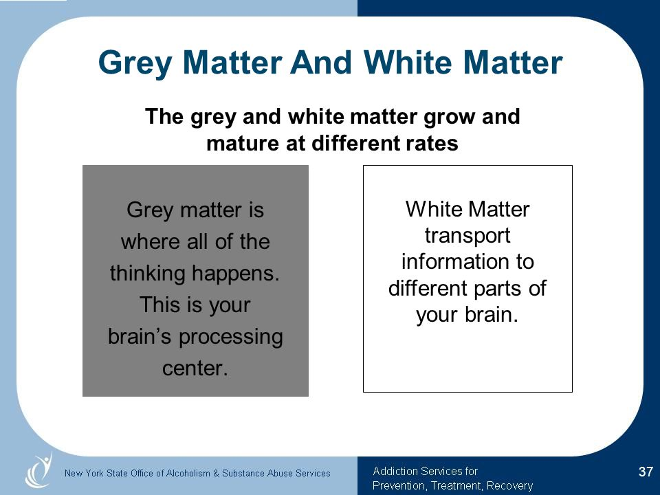 Grey matter is where all of the thinking happens.This is your brain's processing center.
