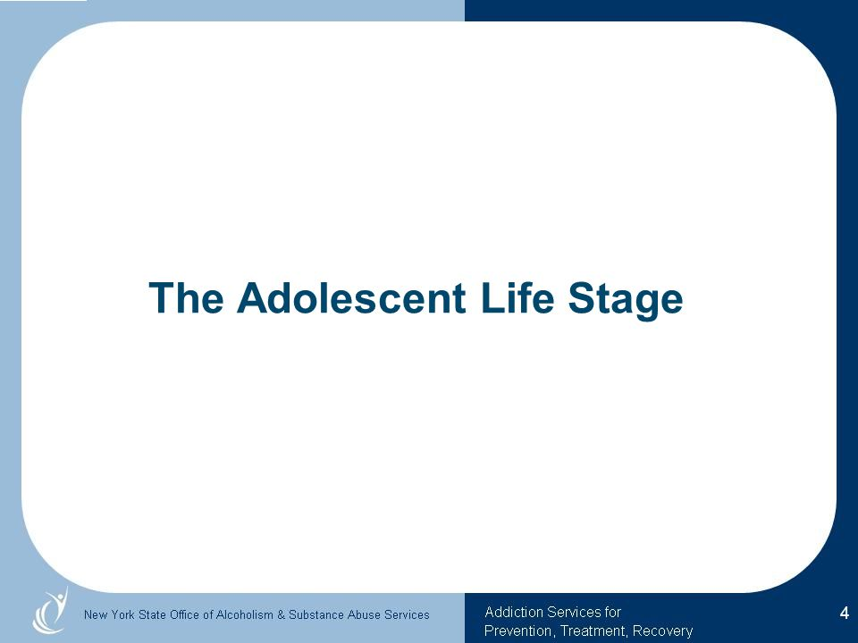 The Adolescent Life Stage 4