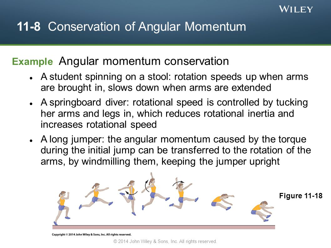 11-8 Conservation of Angular Momentum Example Angular momentum conservation A student spinning on a stool: rotation speeds up when arms are brought in