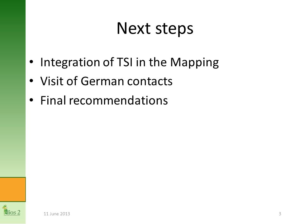 Next steps Integration of TSI in the Mapping Visit of German contacts Final recommendations 11 June 20133