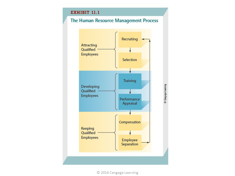 Selection – the process of gathering information about job applicants to decide who should be offered a job Validation – the process of determining how well a selection test or procedures predict future job performance © 2014 Cengage Learning 11-3