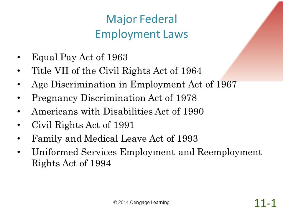 Major Federal Employment Laws Equal Pay Act of 1963 Title VII of the Civil Rights Act of 1964 Age Discrimination in Employment Act of 1967 Pregnancy D