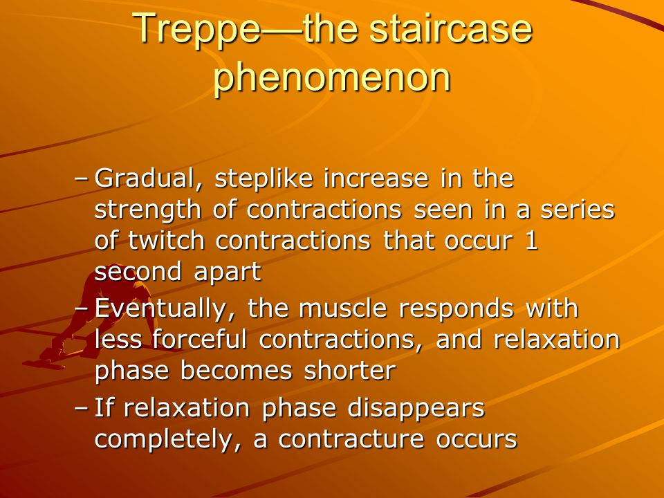 Treppe—the staircase phenomenon –Gradual, steplike increase in the strength of contractions seen in a series of twitch contractions that occur 1 secon
