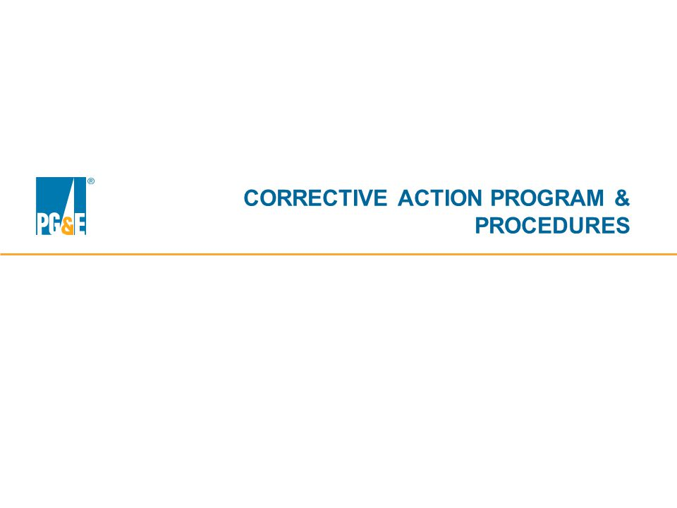 CORRECTIVE ACTION PROGRAM & PROCEDURES