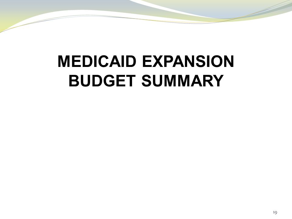 MEDICAID EXPANSION BUDGET SUMMARY 19