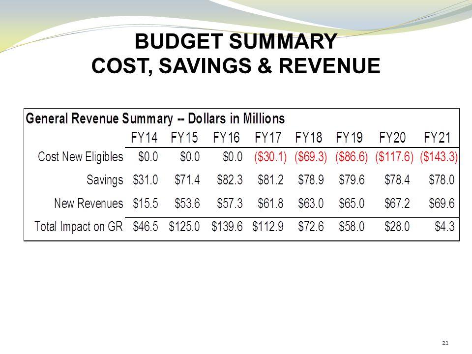 BUDGET SUMMARY COST, SAVINGS & REVENUE 21