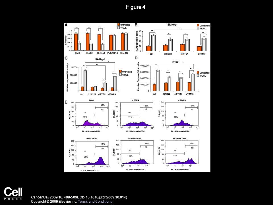 Figure 5 Cancer Cell 2009 16, 498-509DOI: (10.1016/j.ccr.2009.10.014) Copyright © 2009 Elsevier Inc.