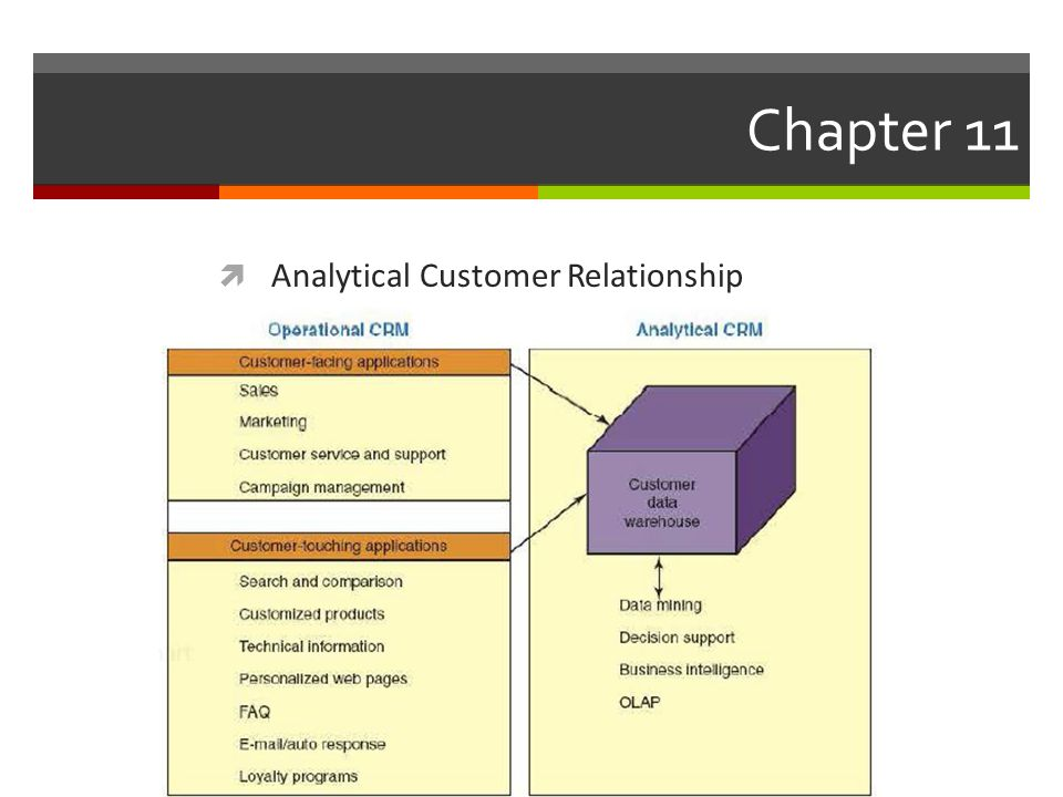 Chapter 11  Analytical Customer Relationship