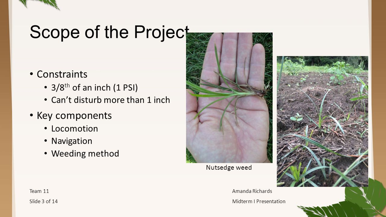 Scope of the Project Constraints 3/8 th of an inch (1 PSI) Can't disturb more than 1 inch Key components Locomotion Navigation Weeding method Team 11Amanda Richards Slide 3 of 14Midterm I Presentation Nutsedge weed