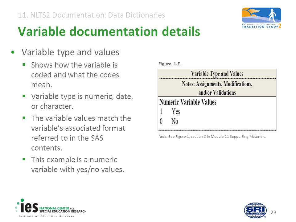11. NLTS2 Documentation: Data Dictionaries 23 Variable documentation details Variable type and values  Shows how the variable is coded and what the c
