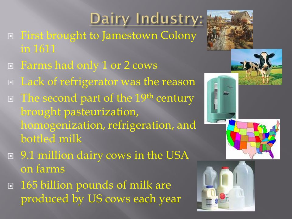  First brought to Jamestown Colony in 1611  Farms had only 1 or 2 cows  Lack of refrigerator was the reason  The second part of the 19 th century brought pasteurization, homogenization, refrigeration, and bottled milk  9.1 million dairy cows in the USA on farms  165 billion pounds of milk are produced by US cows each year