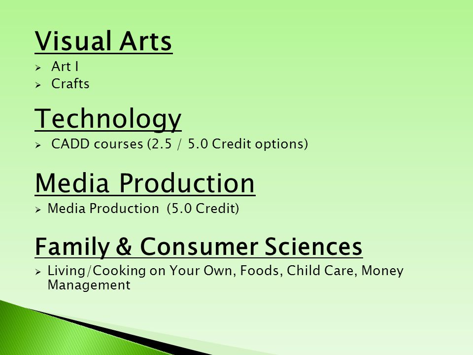Visual Arts  Art I  Crafts Technology  CADD courses (2.5 / 5.0 Credit options) Media Production  Media Production (5.0 Credit) Family & Consumer S
