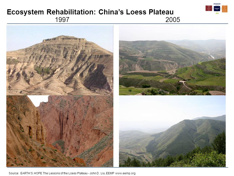 Ecosystem Rehabilitation: China's Loess Plateau Source: EARTH'S HOPE The Lessons of the Loess Plateau - John D. Liu, EEMP www.eemp.org 19972005