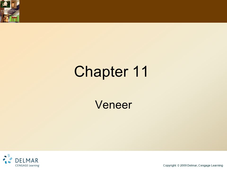 Copyright © 2009 Delmar, Cengage Learning Chapter 11 Veneer