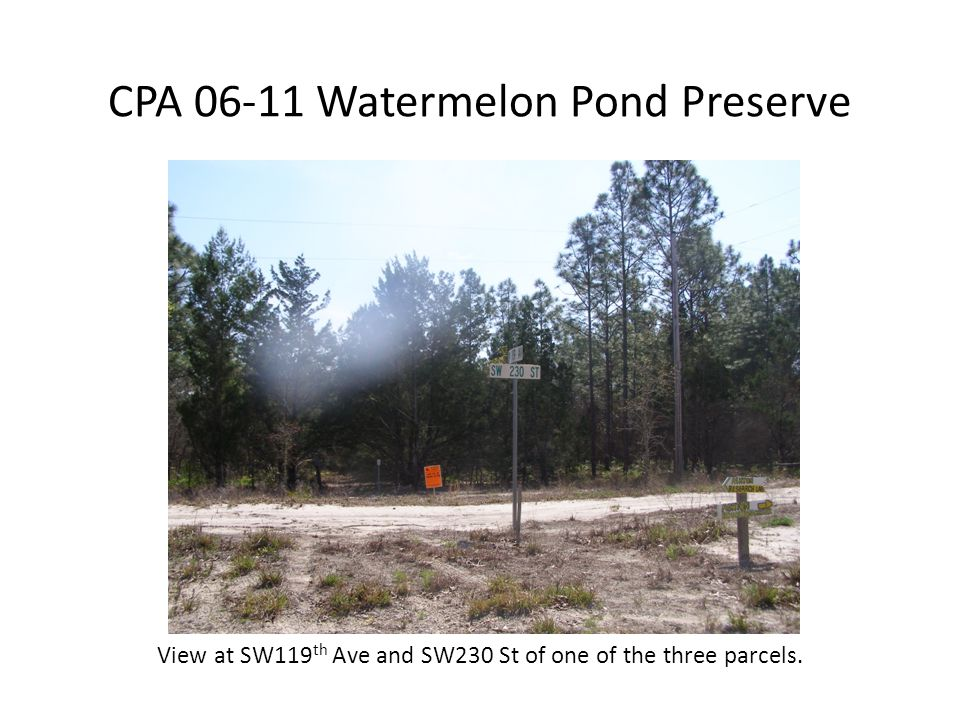 CPA 06-11 Watermelon Pond Preserve View at SW119 th Ave and SW230 St of one of the three parcels.