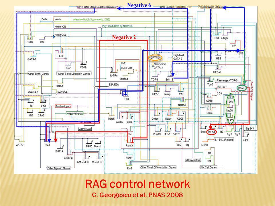 RAG control network C. Georgescu et al. PNAS 2008 Valparaiso26/11/2011