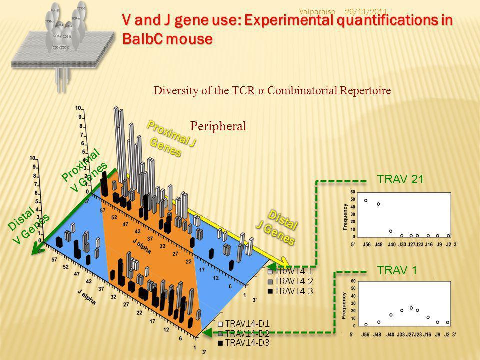 Valparaiso H.I. Suzuki et al., J. Mol. Med. 2010 mitochondrion 26/11/2011 target tRNA