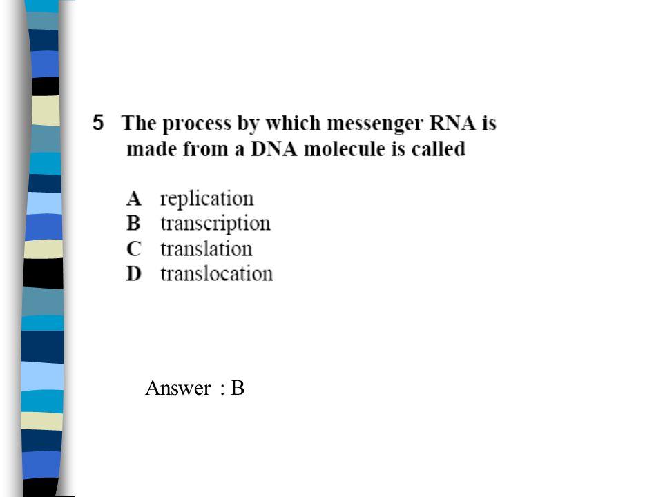 Answer : B