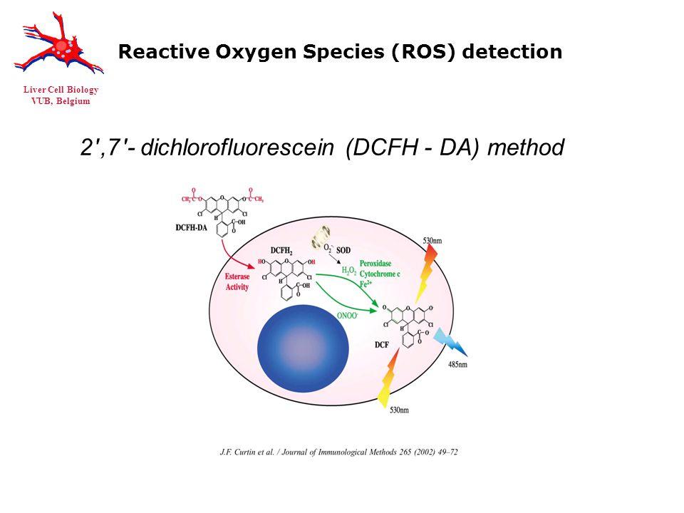 Liver Cell Biology VUB, Belgium Reactive Oxygen Species (ROS) detection 2 ,7 -dichlorofluorescein (DCFH-DA) method