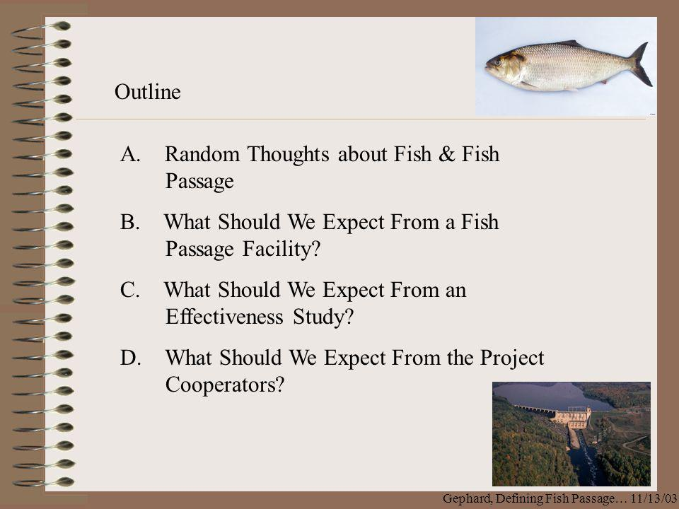 Outline A. Random Thoughts about Fish & Fish Passage B. What Should We Expect From a Fish Passage Facility? C. What Should We Expect From an Effective