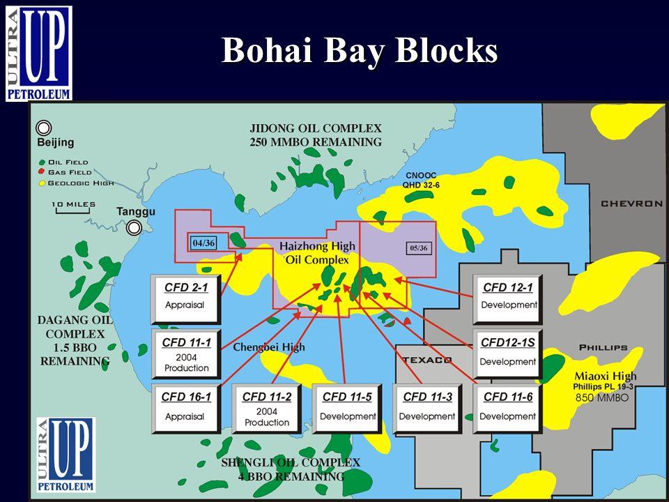 Bohai Bay Blocks