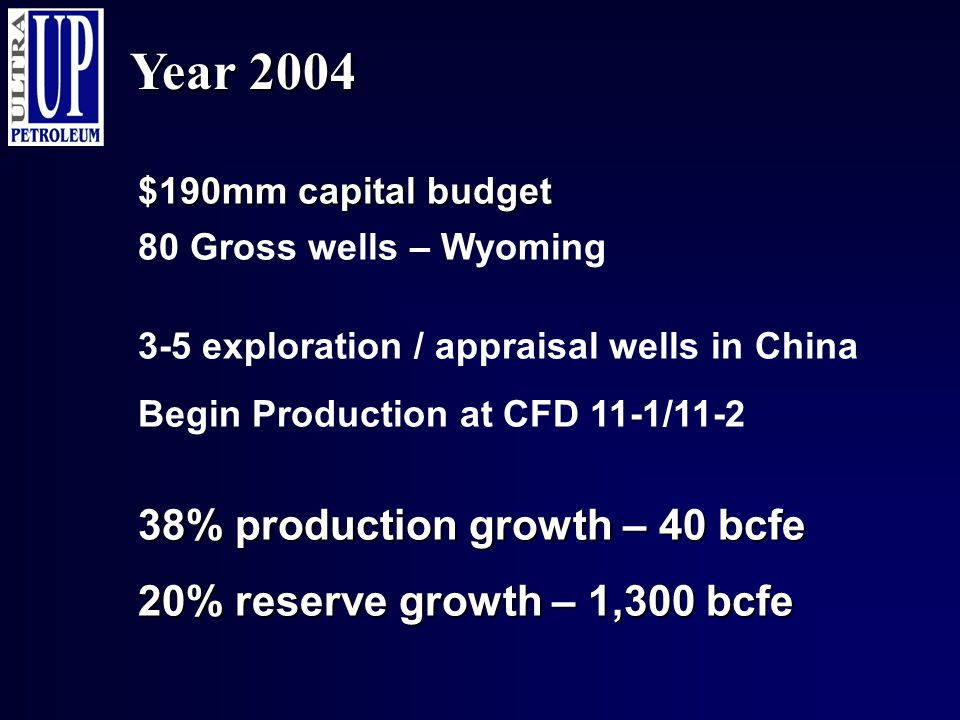 Year 2004 $190mm capital budget 38% production growth – 40 bcfe 20% reserve growth – 1,300 bcfe 80 Gross wells – Wyoming 3-5 exploration / appraisal w