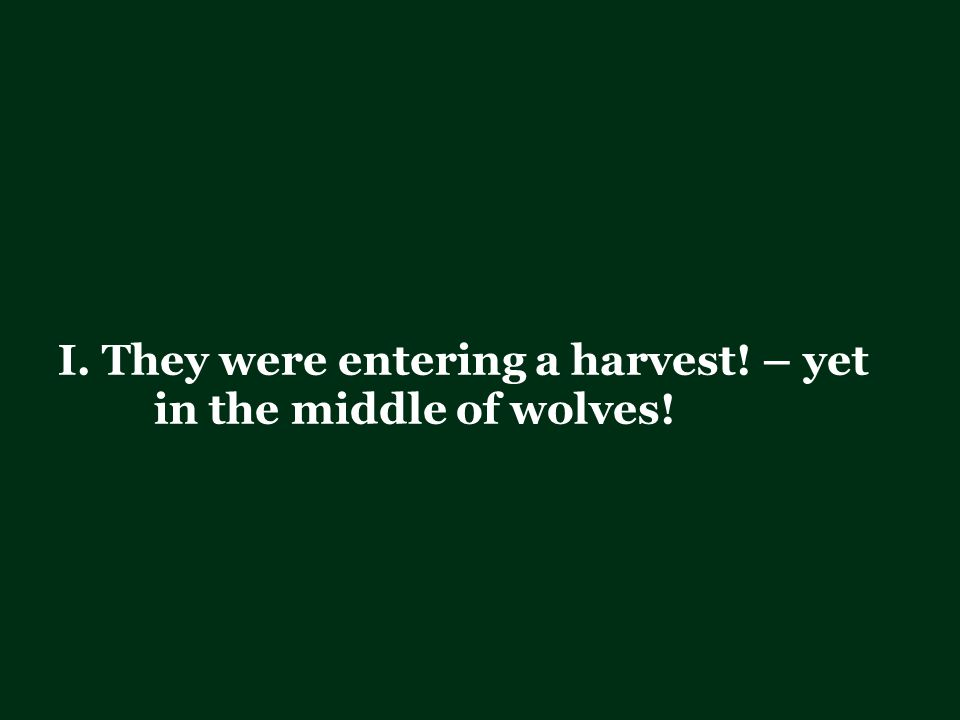 I.They were entering a harvest. – yet in the middle of wolves.