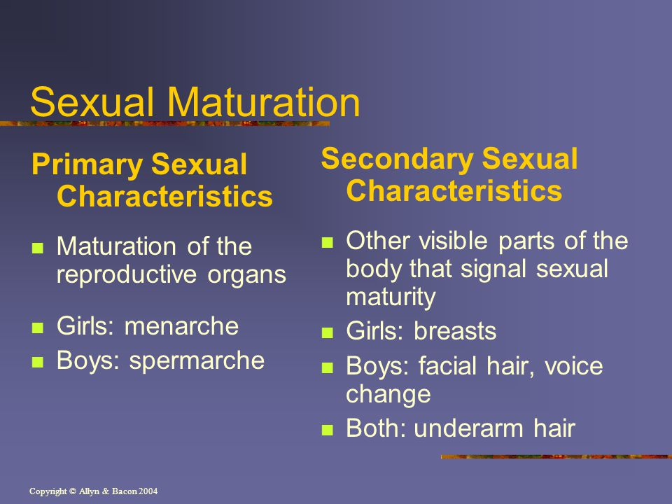 Copyright © Allyn & Bacon 2004 Sexual Maturation Primary Sexual Characteristics Maturation of the reproductive organs Girls: menarche Boys: spermarche