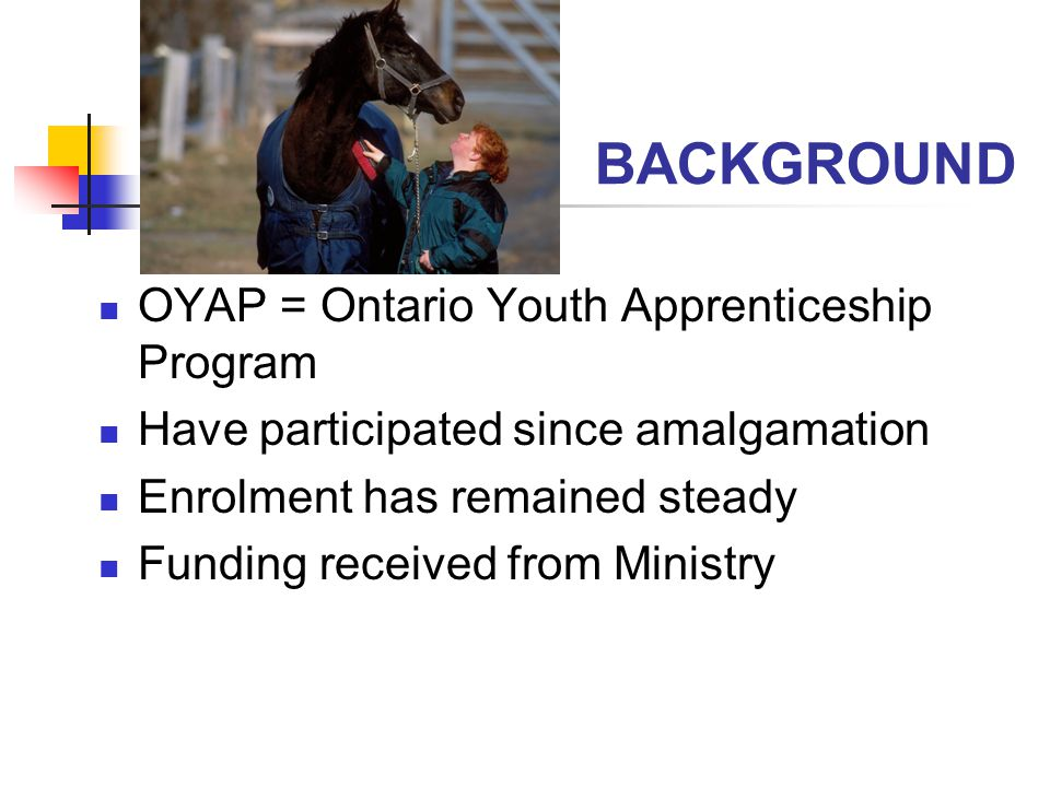 BACKGROUND OYAP = Ontario Youth Apprenticeship Program Have participated since amalgamation Enrolment has remained steady Funding received from Ministry