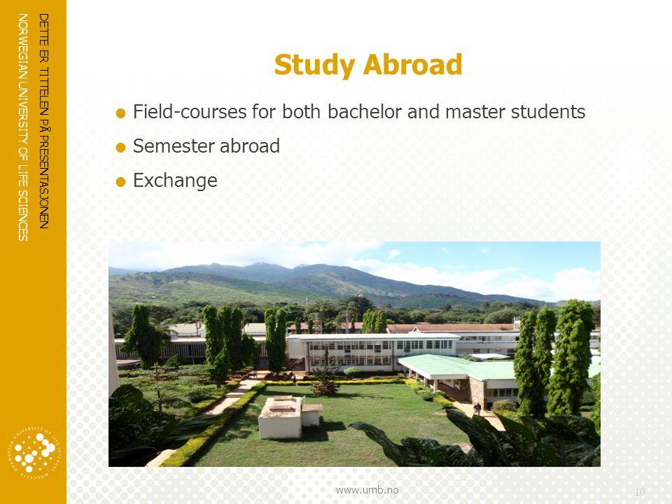 NORWEGIAN UNIVERSITY OF LIFE SCIENCES www.umb.no Study Abroad  Field-courses for both bachelor and master students  Semester abroad  Exchange DETTE ER TITTELEN PÅ PRESENTASJONEN 10