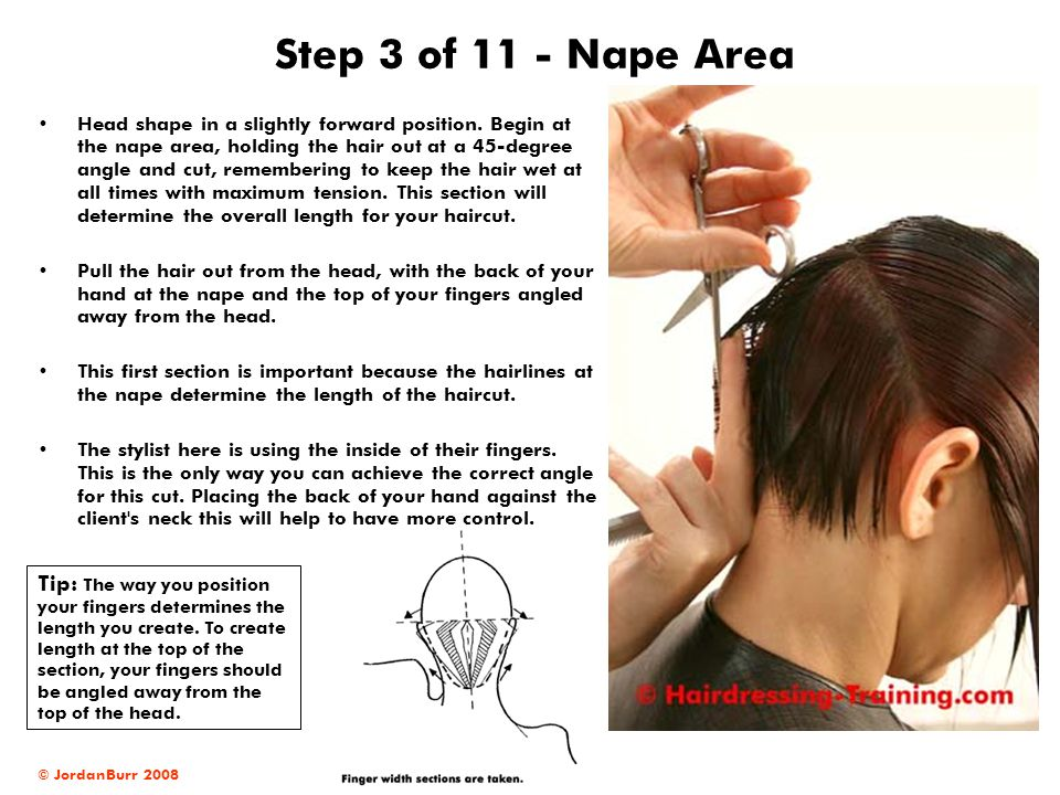© JordanBurr 2008 Step 3 of 11 - Nape Area Head shape in a slightly forward position. Begin at the nape area, holding the hair out at a 45-degree angl