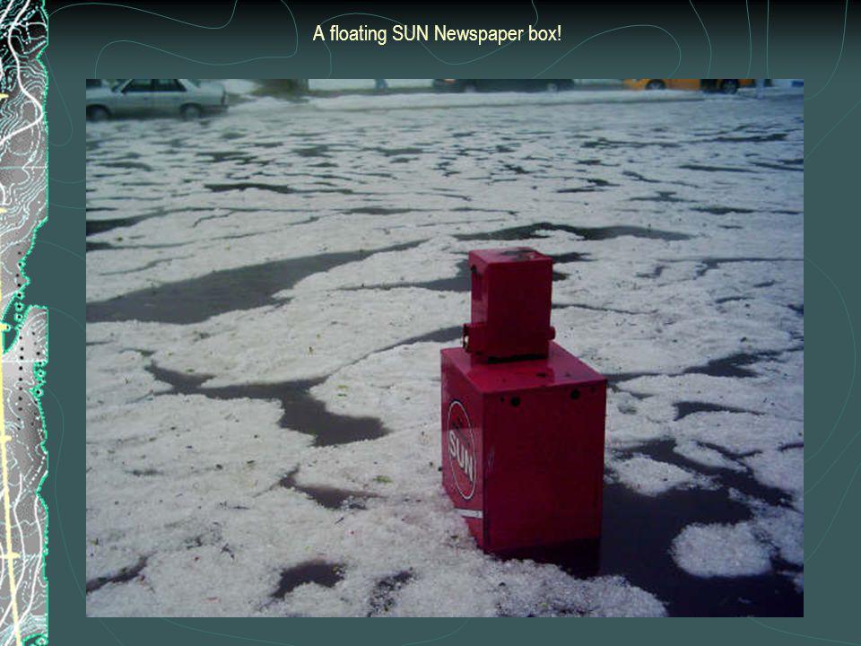 A floating SUN Newspaper box!