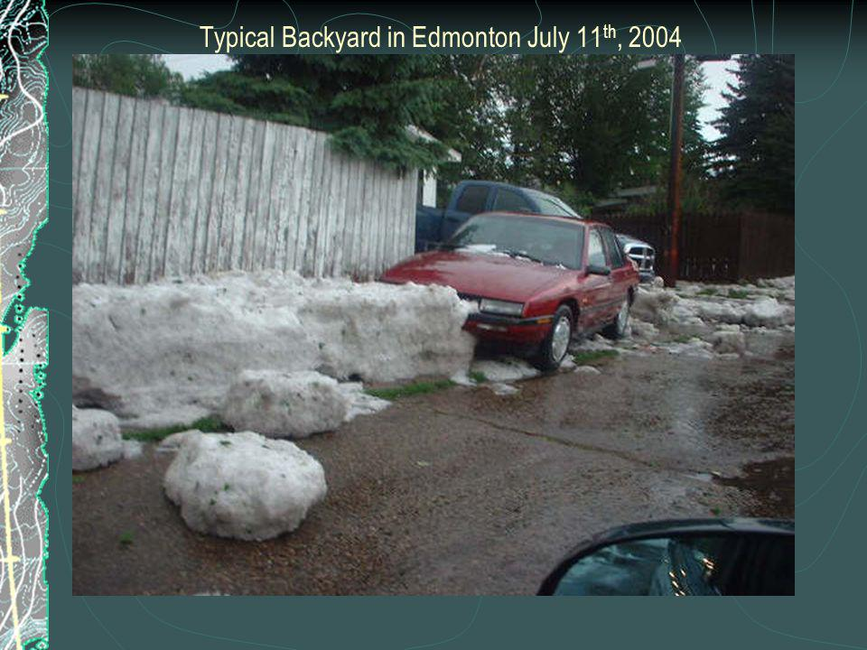 Typical Backyard in Edmonton July 11 th, 2004