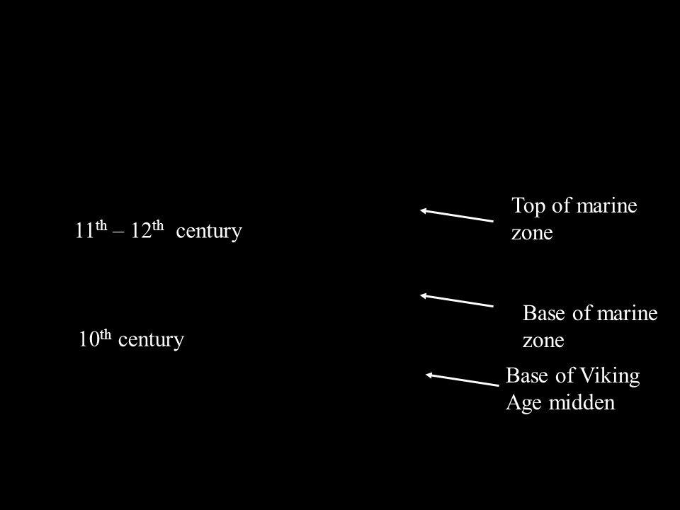 Base of Viking Age midden Top of marine zone Quoygrew Chronology Base of marine zone 10 th century 11 th – 12 th century