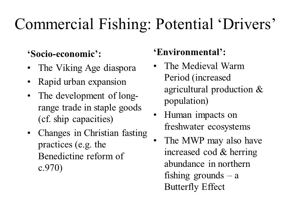 Commercial Fishing: Potential 'Drivers' 'Socio-economic': The Viking Age diaspora Rapid urban expansion The development of long- range trade in staple goods (cf.