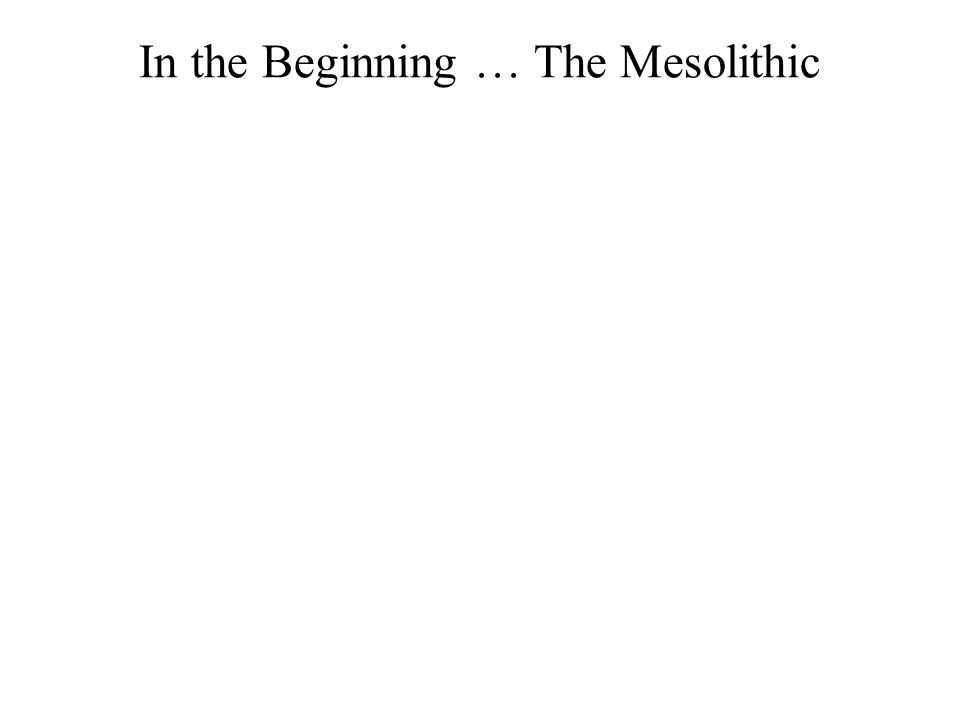 In the Beginning … The Mesolithic