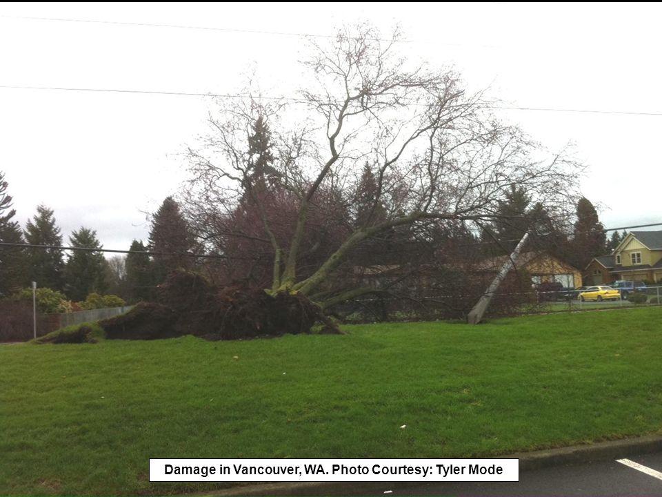Damage in Vancouver, WA. Photo Courtesy: Tyler Mode