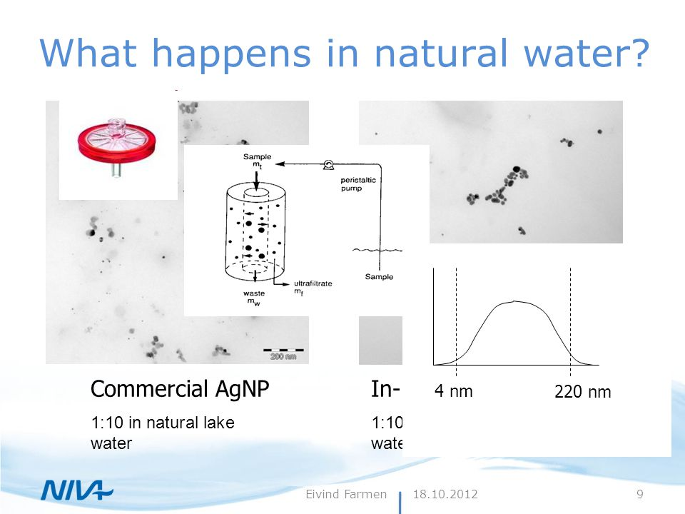 18.10.2012Eivind Farmen What happens in natural water? Commercial AgNP 1:10 in natural lake water In-house AgNP 1:10 in natural lake water 4 nm 220 nm