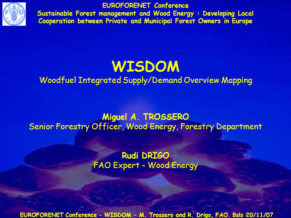 EUROFORENET Conference - WISDOM - M. Trossero and R. Drigo, FAO. Bsls 20/11/07 EUROFORENET Conference Sustainable Forest management and Wood Energy :