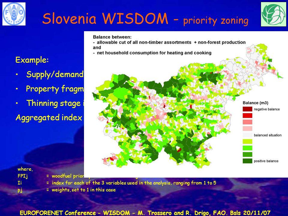 EUROFORENET Conference - WISDOM - M. Trossero and R. Drigo, FAO. Bsls 20/11/07 Indexing approach Example: Supply/demand balance index Property fragmen