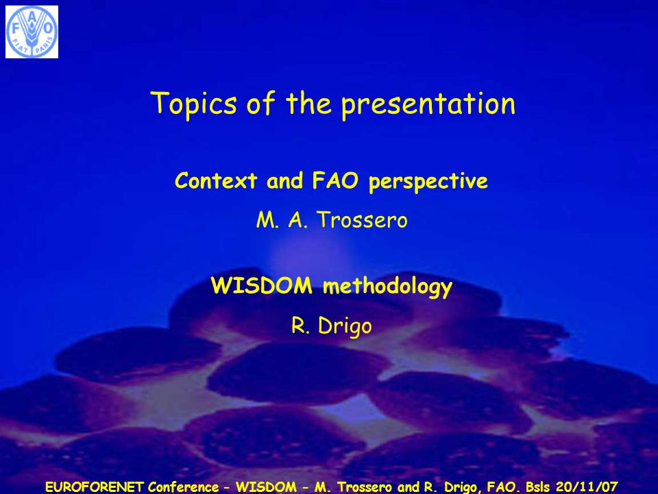 EUROFORENET Conference - WISDOM - M. Trossero and R. Drigo, FAO. Bsls 20/11/07 Topics of the presentation Context and FAO perspective M. A. Trossero W