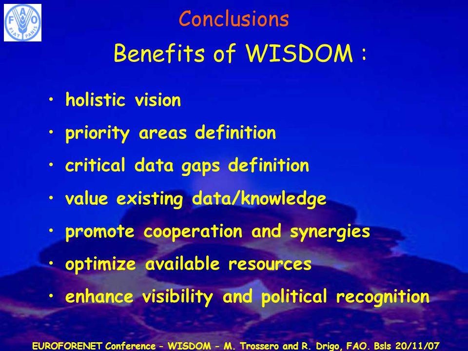 EUROFORENET Conference - WISDOM - M. Trossero and R. Drigo, FAO. Bsls 20/11/07 Benefits of WISDOM : holistic vision priority areas definition critical
