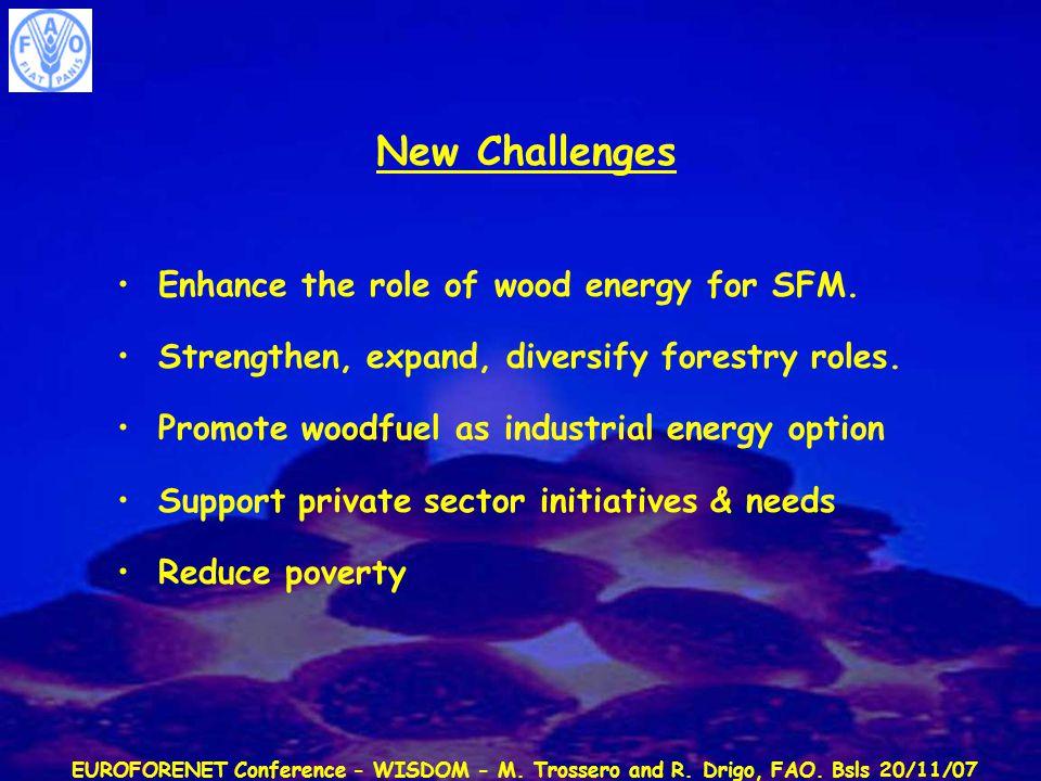 EUROFORENET Conference - WISDOM - M. Trossero and R. Drigo, FAO. Bsls 20/11/07 New Challenges Enhance the role of wood energy for SFM. Strengthen, exp