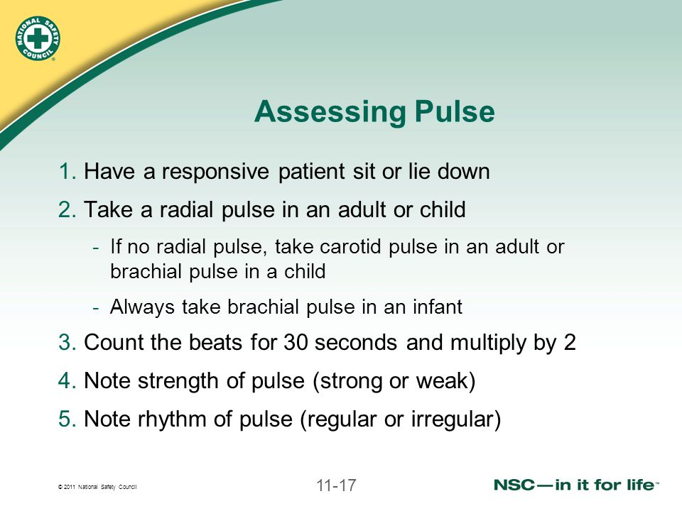 © 2011 National Safety Council 11-17 Assessing Pulse 1.Have a responsive patient sit or lie down 2.Take a radial pulse in an adult or child -If no radial pulse, take carotid pulse in an adult or brachial pulse in a child -Always take brachial pulse in an infant 3.Count the beats for 30 seconds and multiply by 2 4.Note strength of pulse (strong or weak) 5.Note rhythm of pulse (regular or irregular)