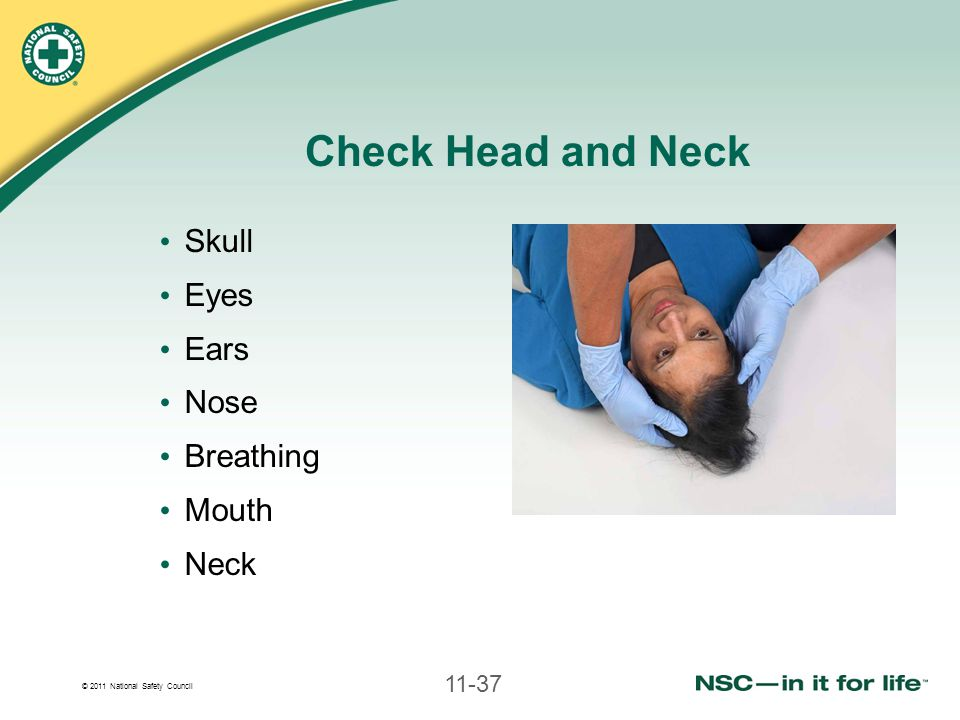 © 2011 National Safety Council 11-37 Check Head and Neck Skull Eyes Ears Nose Breathing Mouth Neck