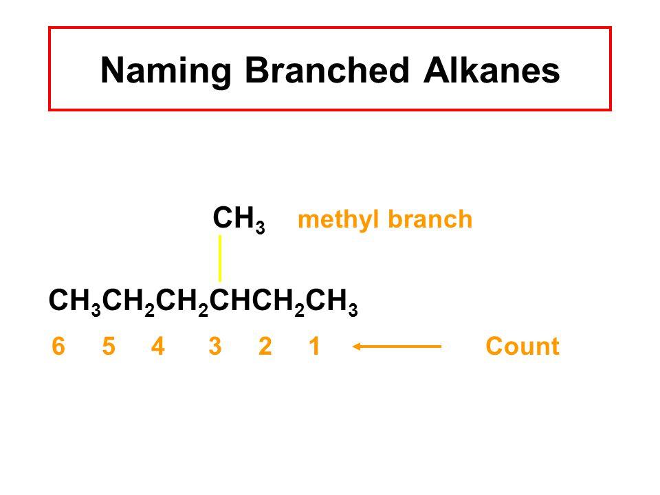 Naming Branched Alkanes CH 3 methyl branch CH 3 CH 2 CH 2 CHCH 2 CH 3 6 5 4 3 2 1Count