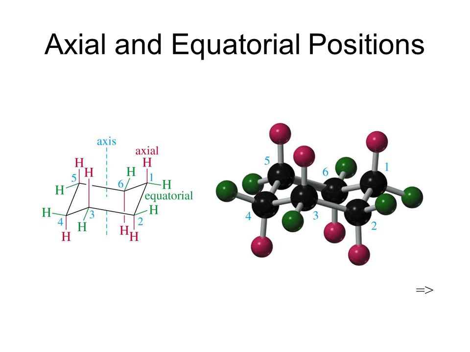 Axial and Equatorial Positions =>